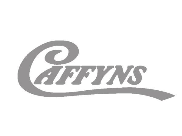 caffyns logo caricature client